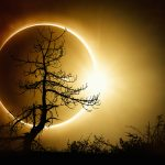 "Writer Tom Hoover Says, ""I Blame the Eclipse."""